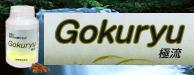 Gouryu-極流
